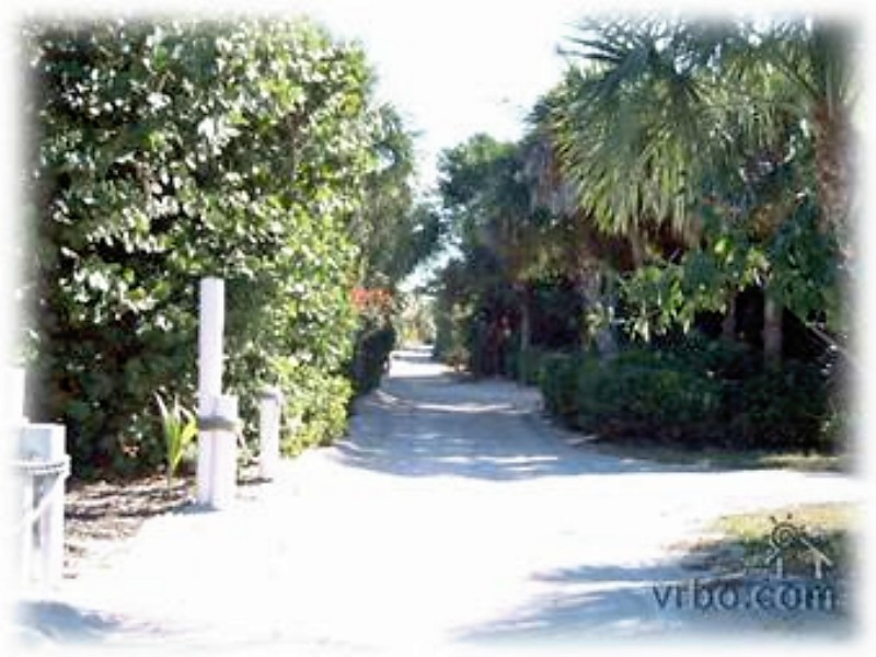 Escondido Lane- one of the prettiest on the island