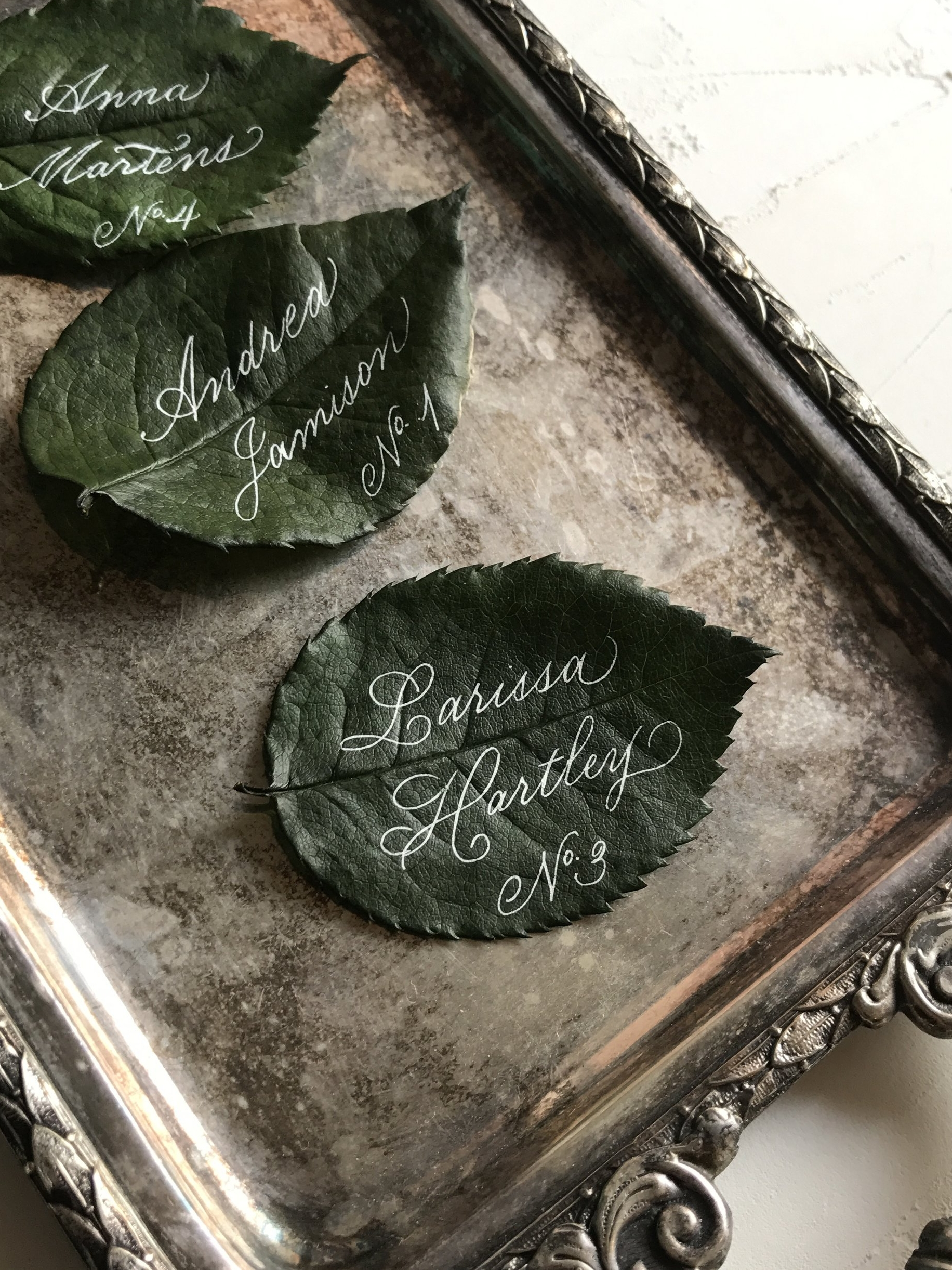 Leaf calligraphy.JPG