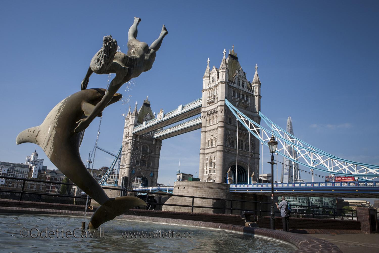 Dolphin @ London Bridge.jpg