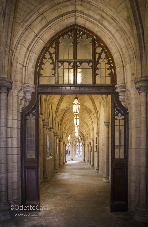 through the arches.jpg