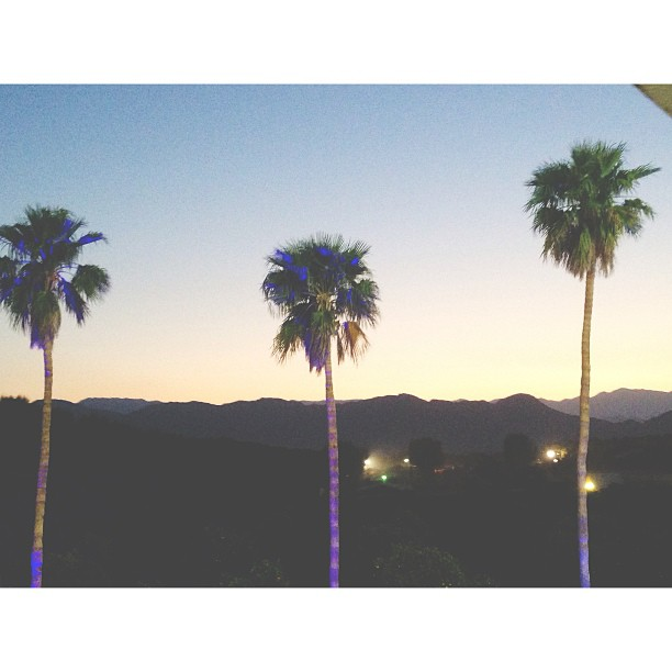 oh the beautiful coachella valley. mountains and palm trees everywhere.