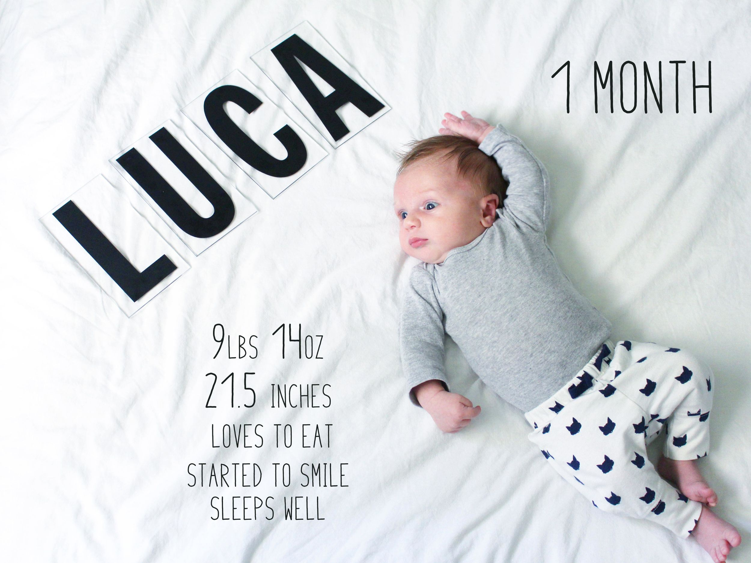 baby monthly update