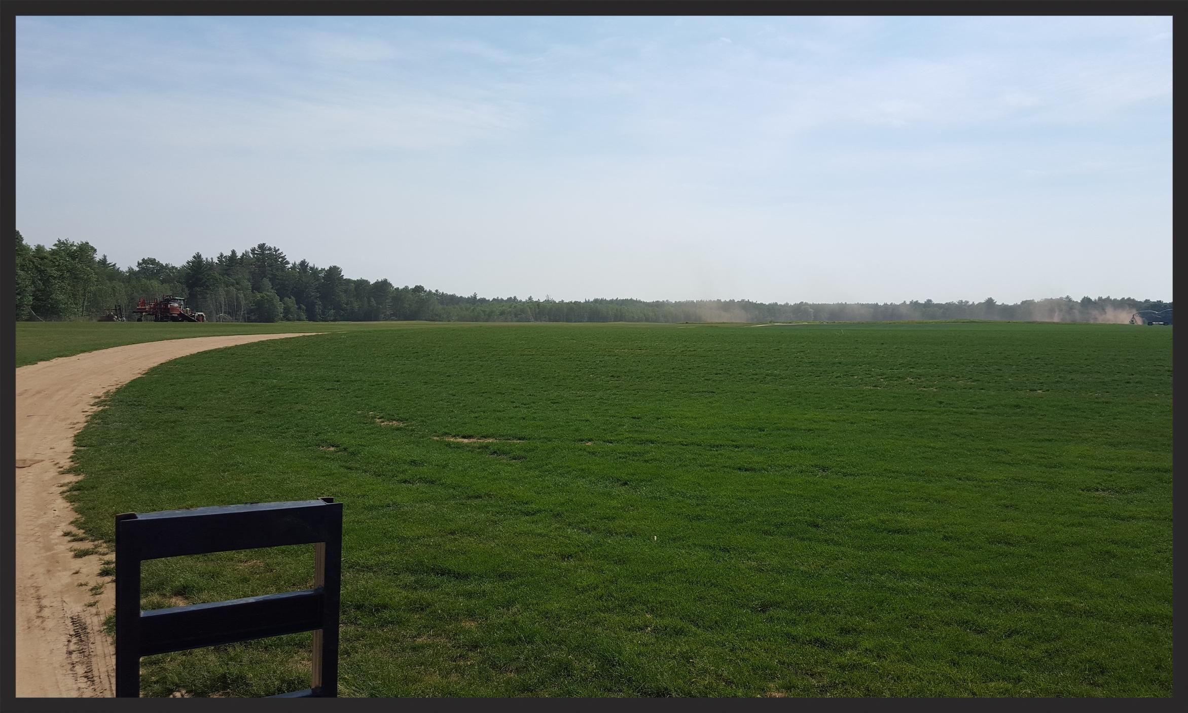 Tuckahoe Turf Farms, Berwick Maine
