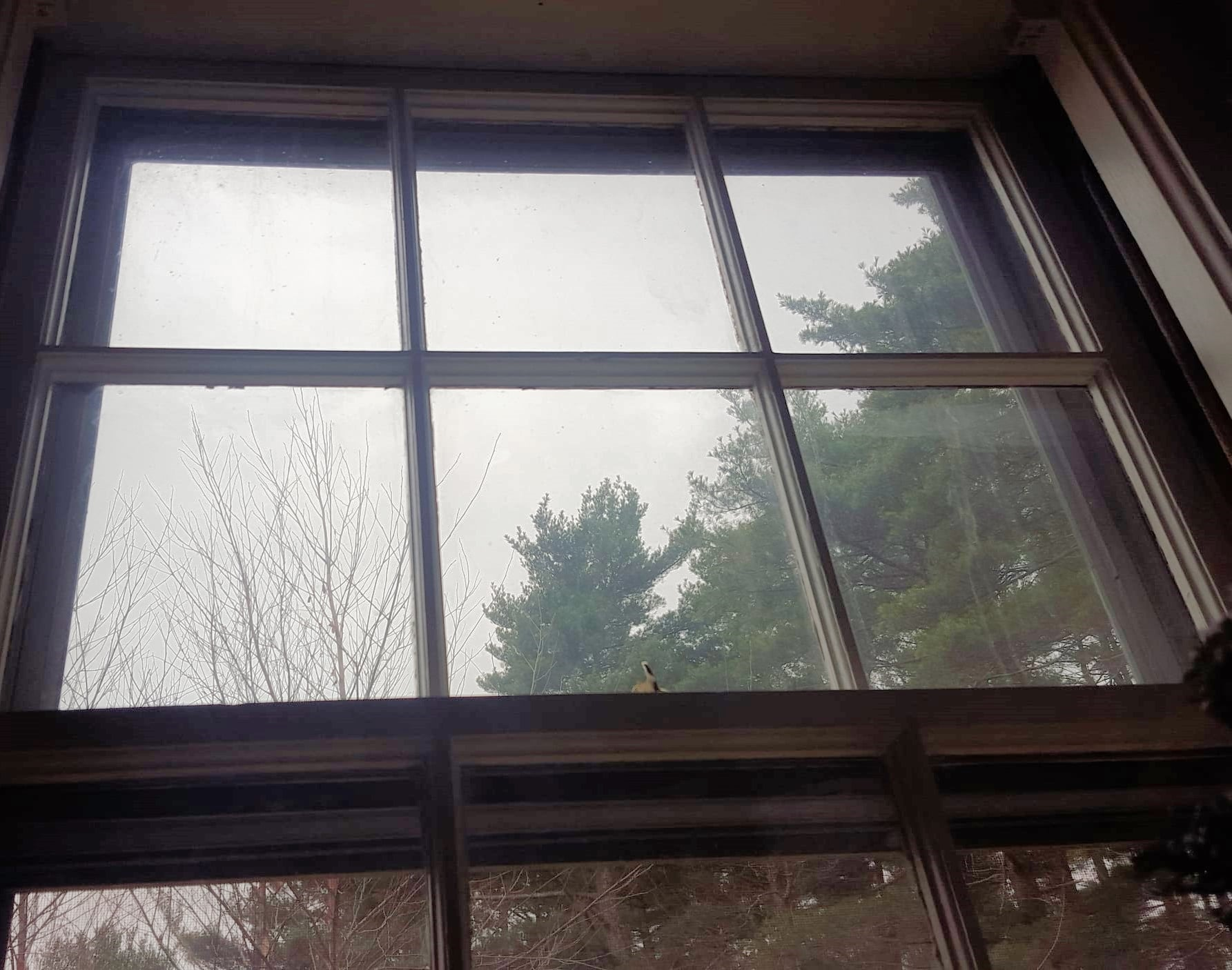 Have you latched the window shut and still wonder why you can feel cold air or notice a candle flicker?