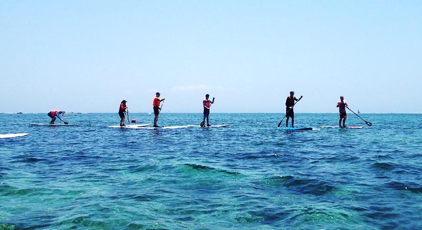 maldives paddleboarding.png