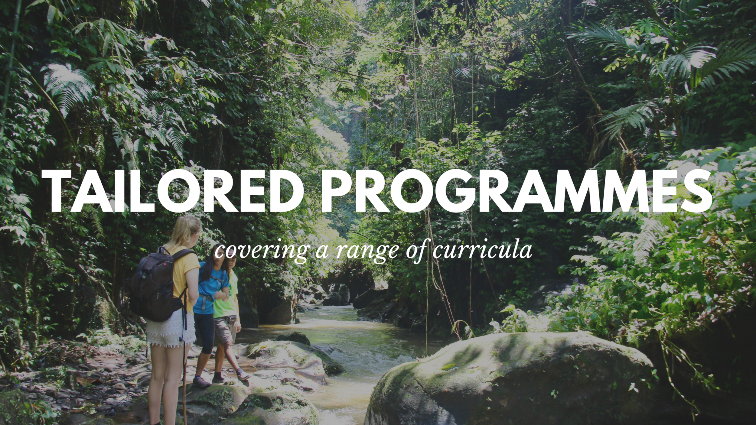 tailored programmes covering a range of curricula