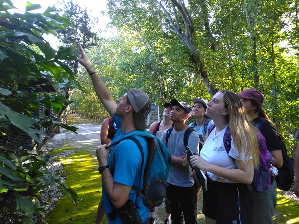 Ecosystem exploration at Sungai Buloh
