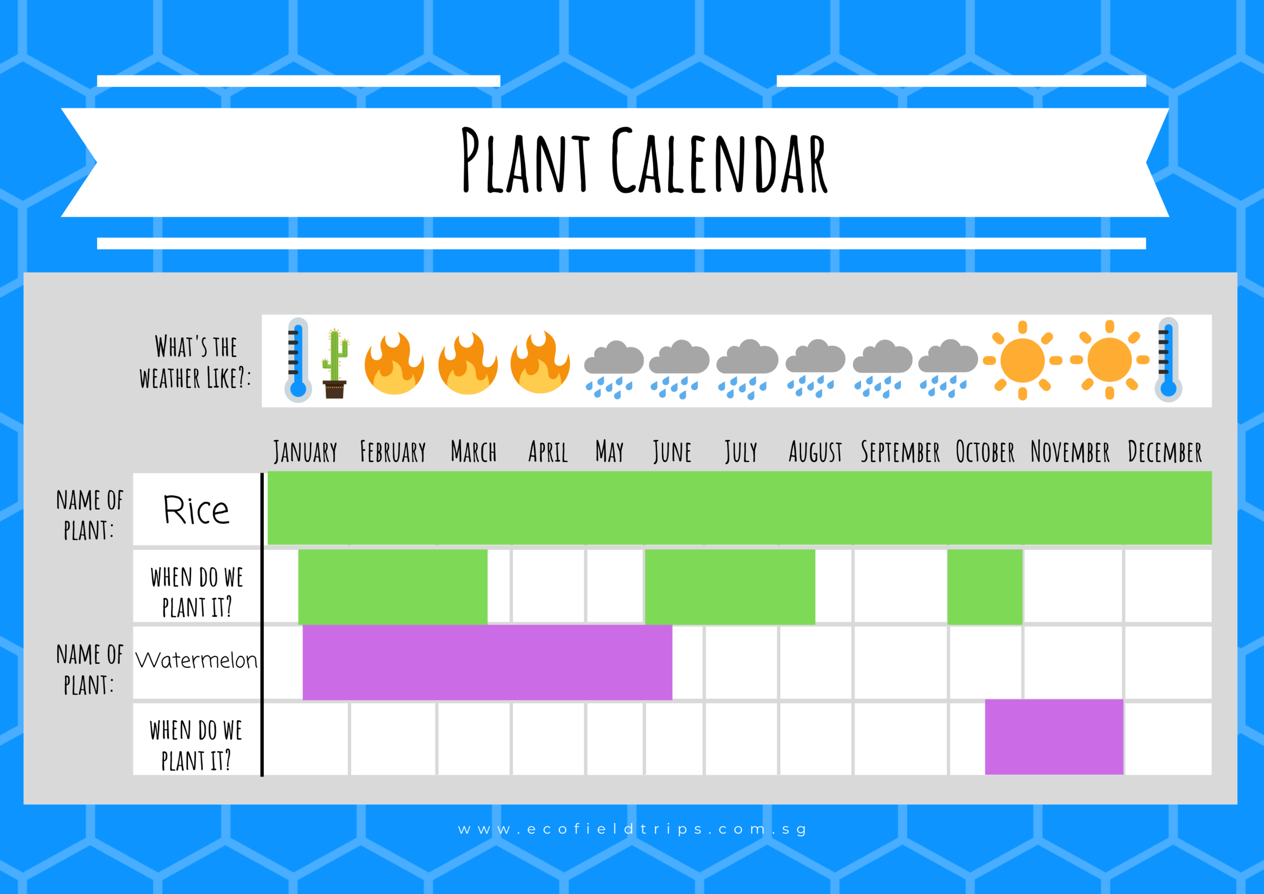 A completed calendar might look something like this…