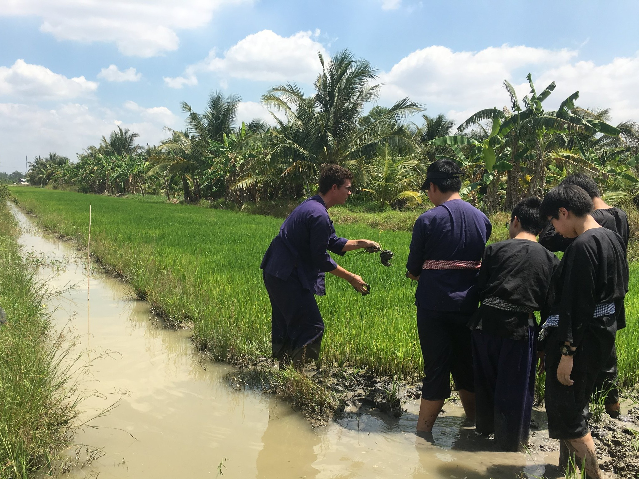 Students learning about rice on a trip to the Mekong Delta, Vietnam.