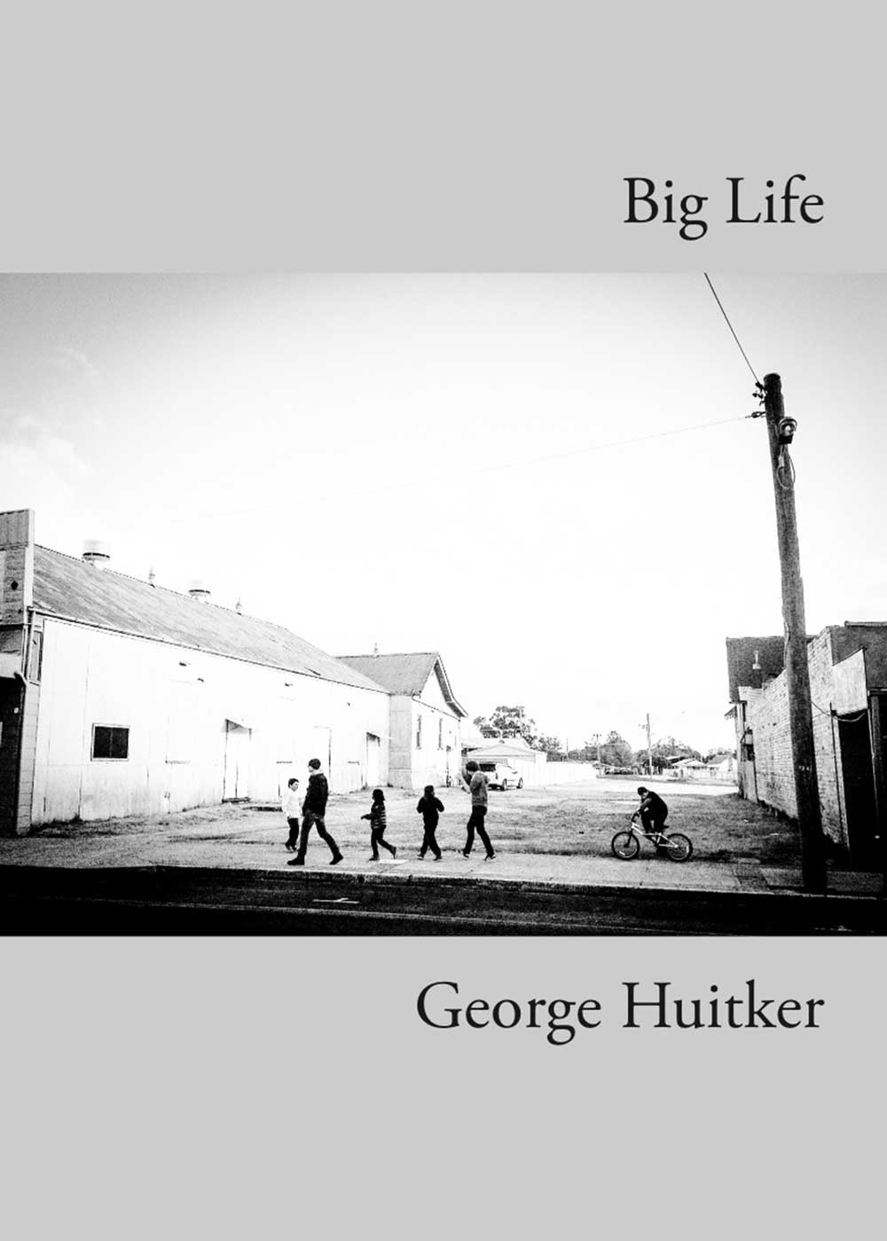 Big Life book cover.