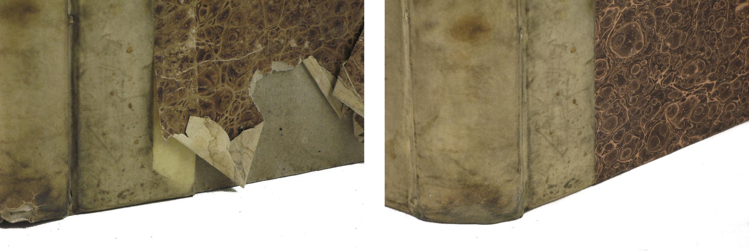 vellum spine restoration.10.jpg