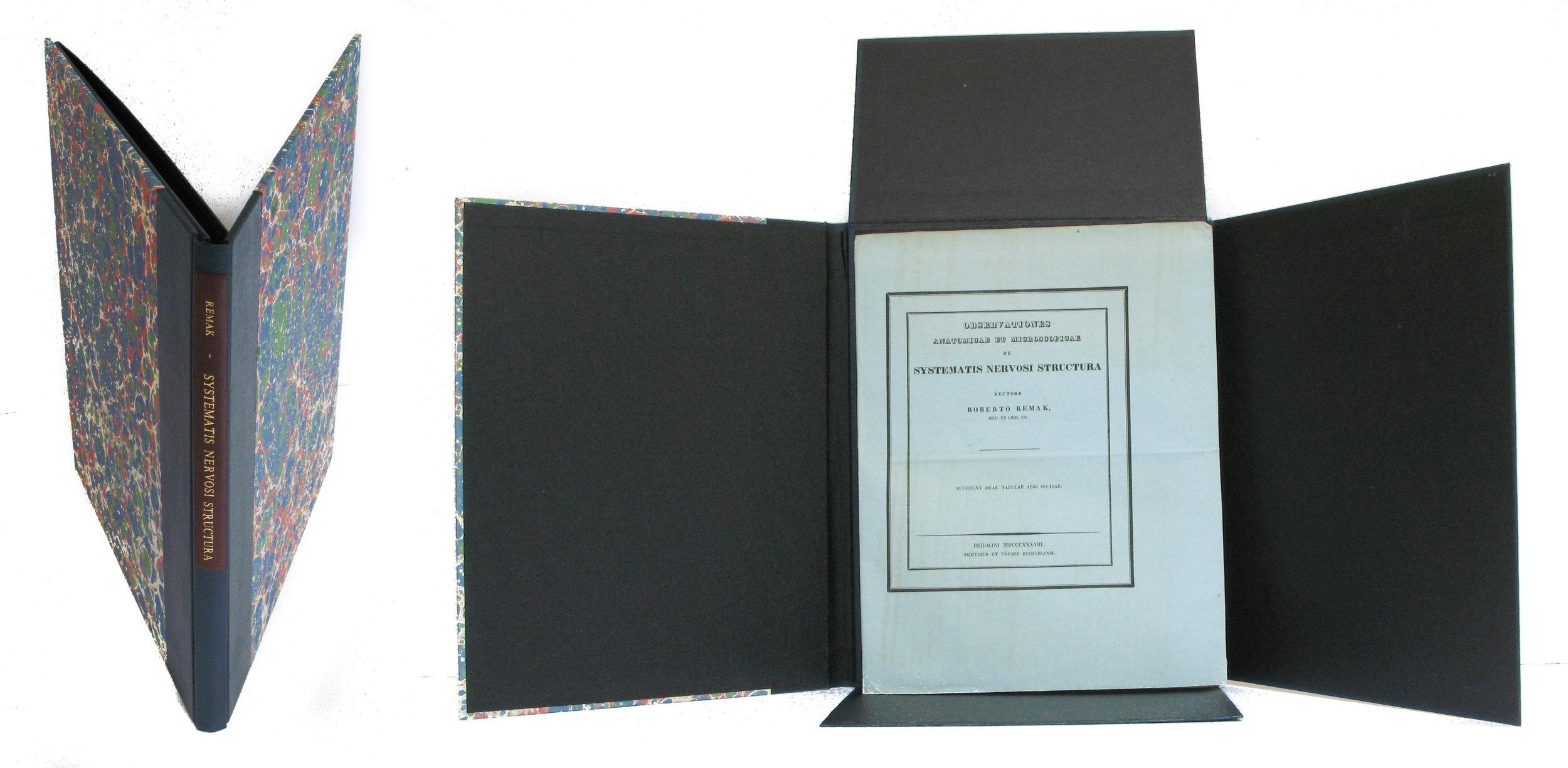 4 flap folio box.5mb.jpg