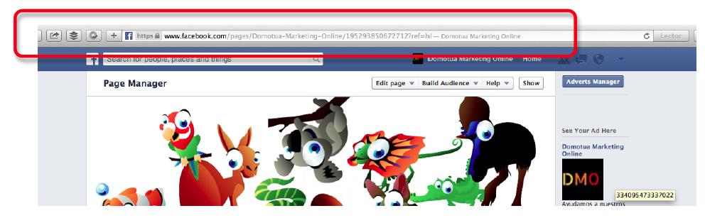 Facebook likealyzer2