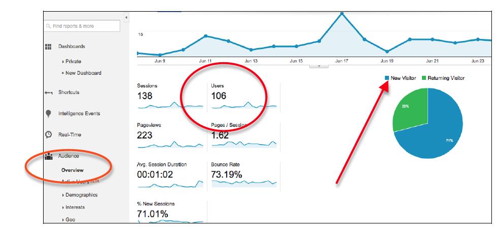 imagen con el número de usuarios que han visitado la web