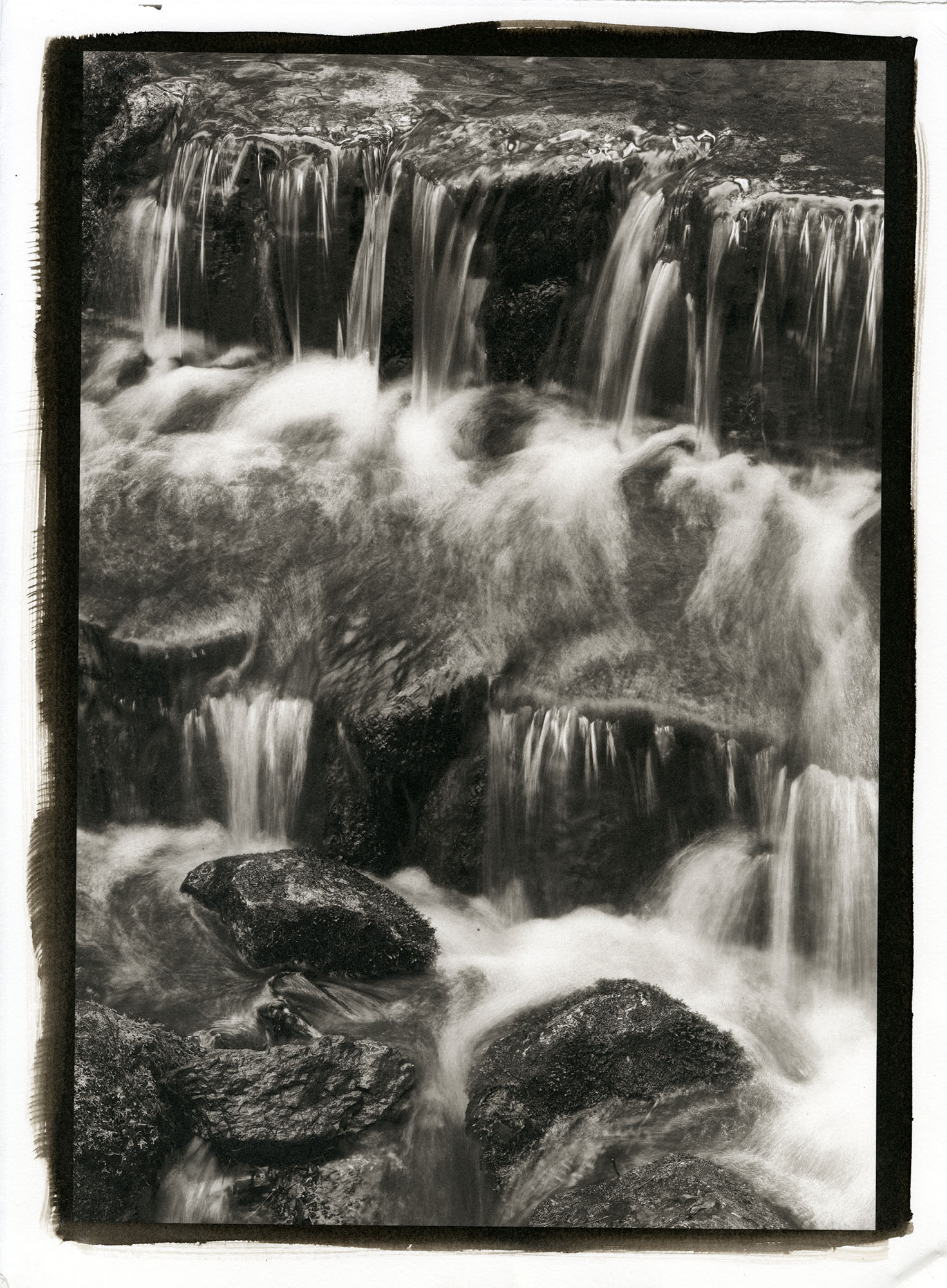 "Fern Creek  (Platinum/Palladium Print, 11 x 14"")"