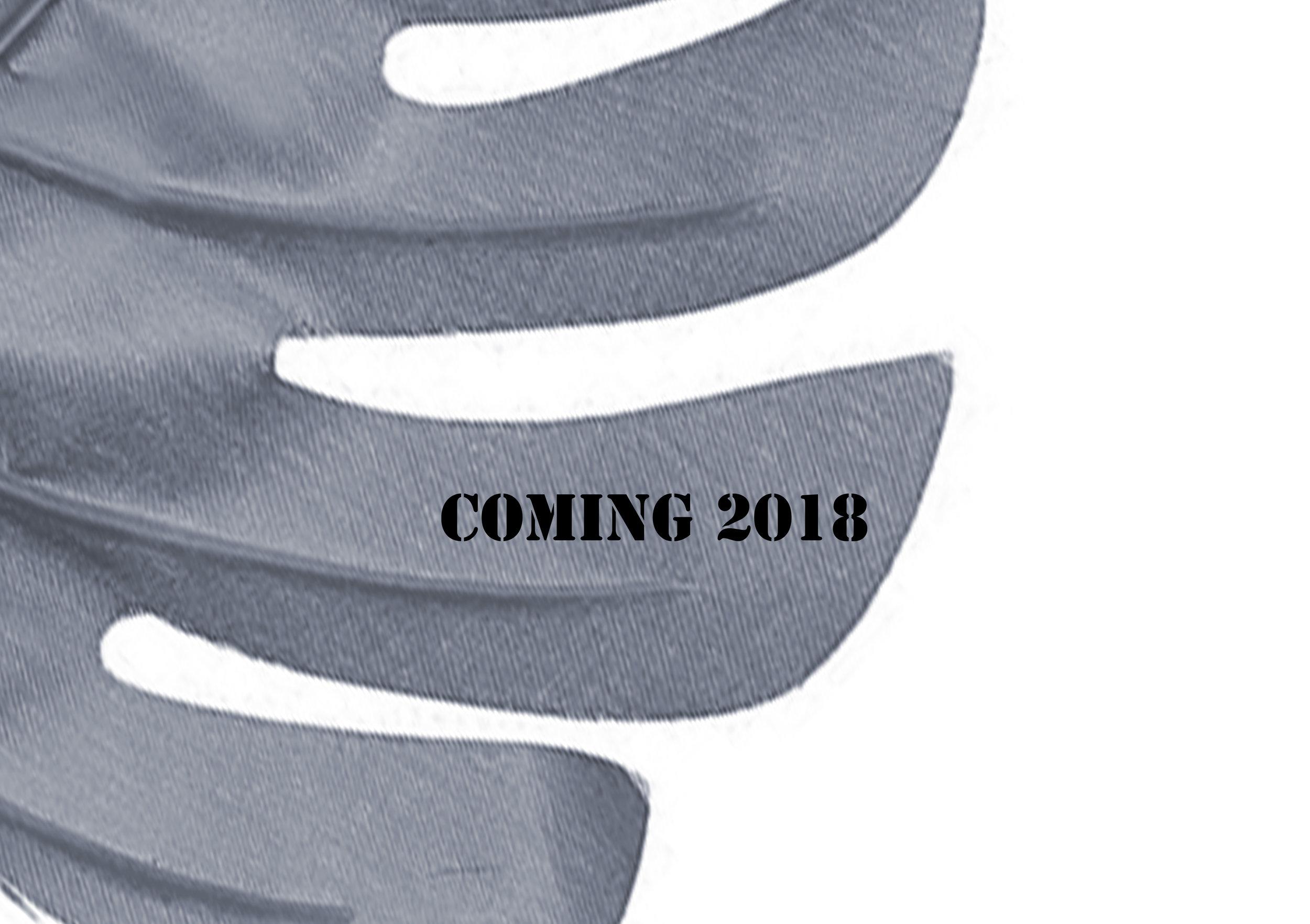 Coming 2018.jpg