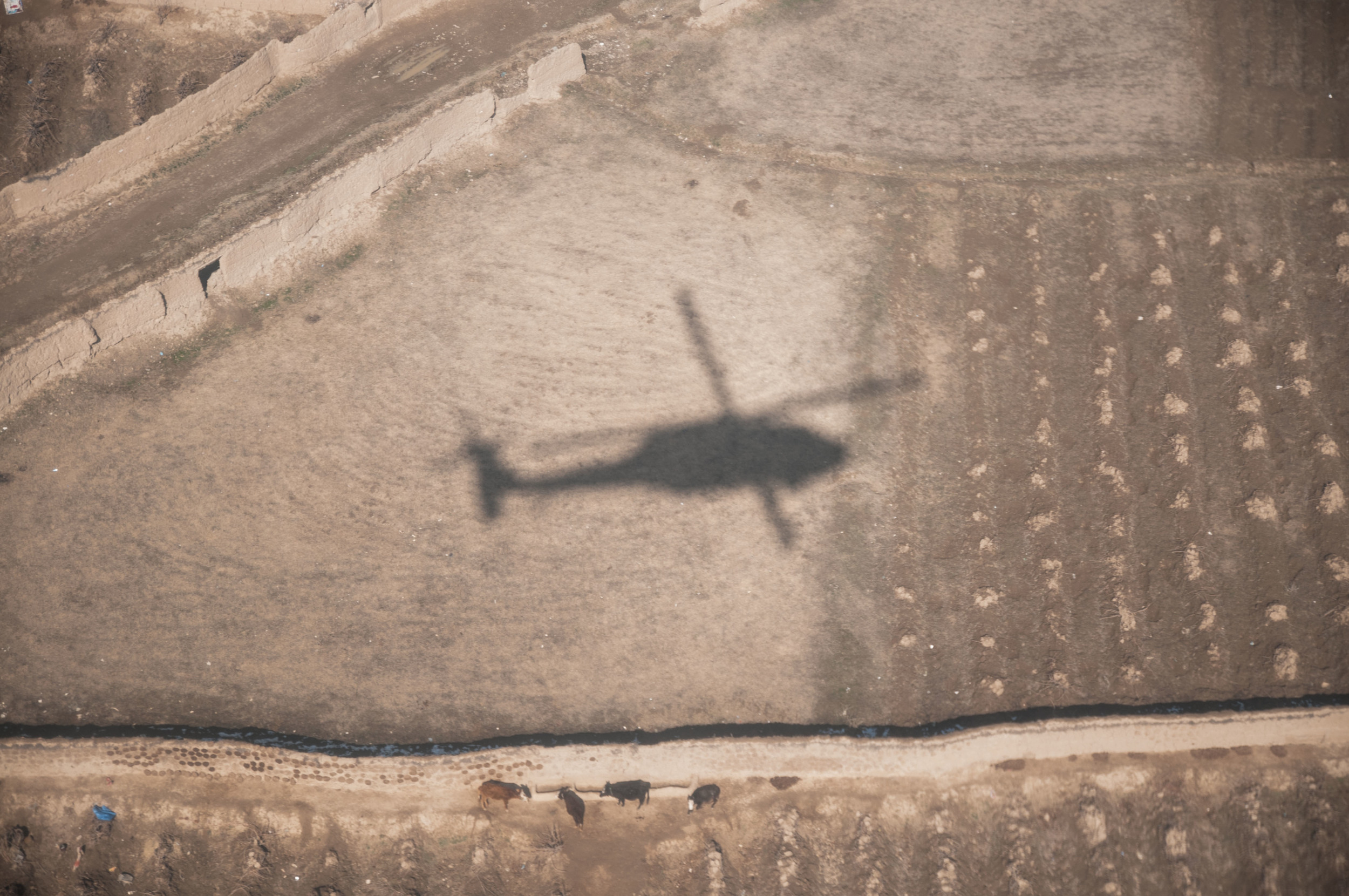 The UH-60 Blackhawk made by Sikorsky has never looked so good, that even its own shadow portrays awesomeness.     COWS!