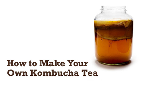 how-to-make-your-own-kombucha-tea-500x301.jpg