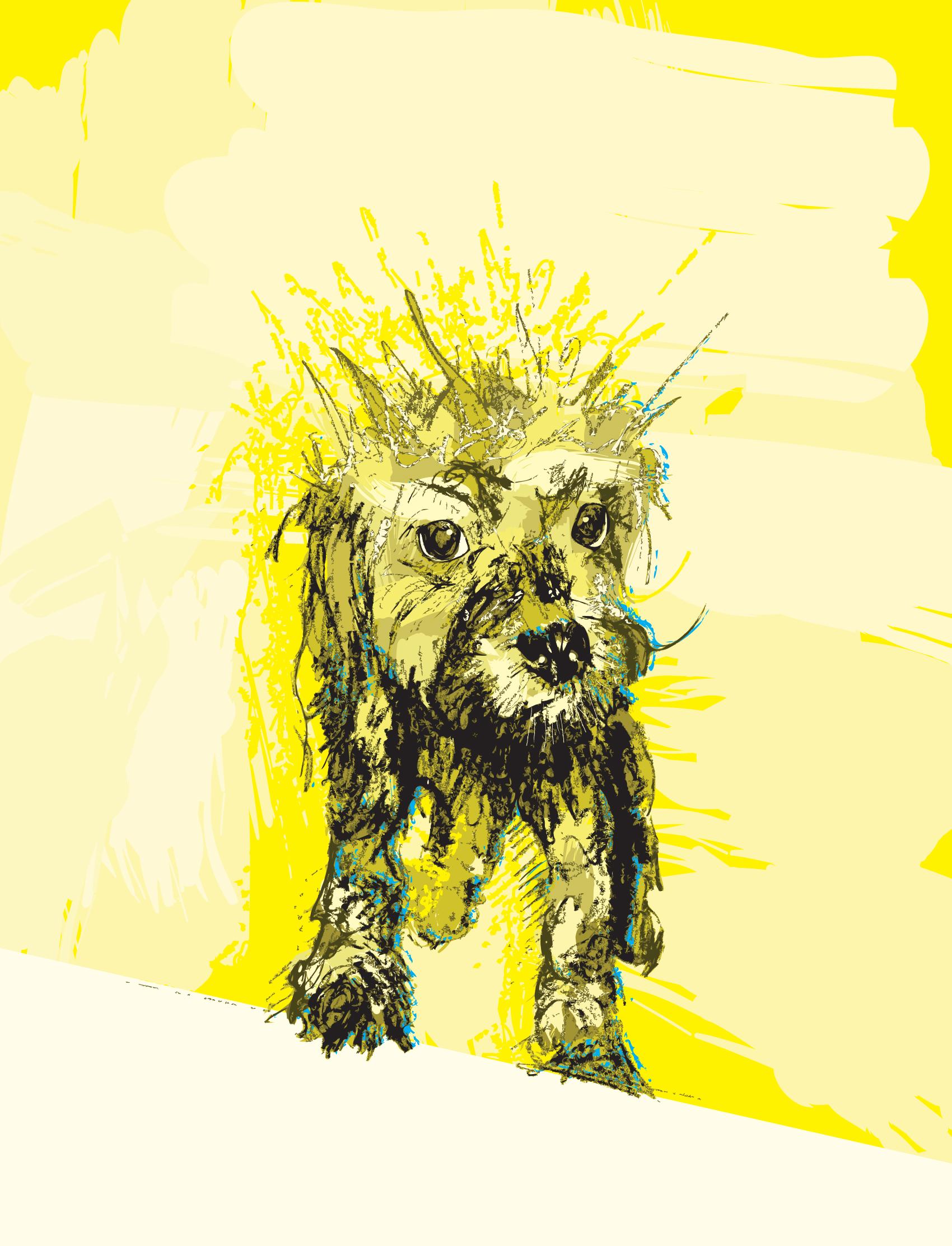 digital-drawing-15-Sams-dog.jpg