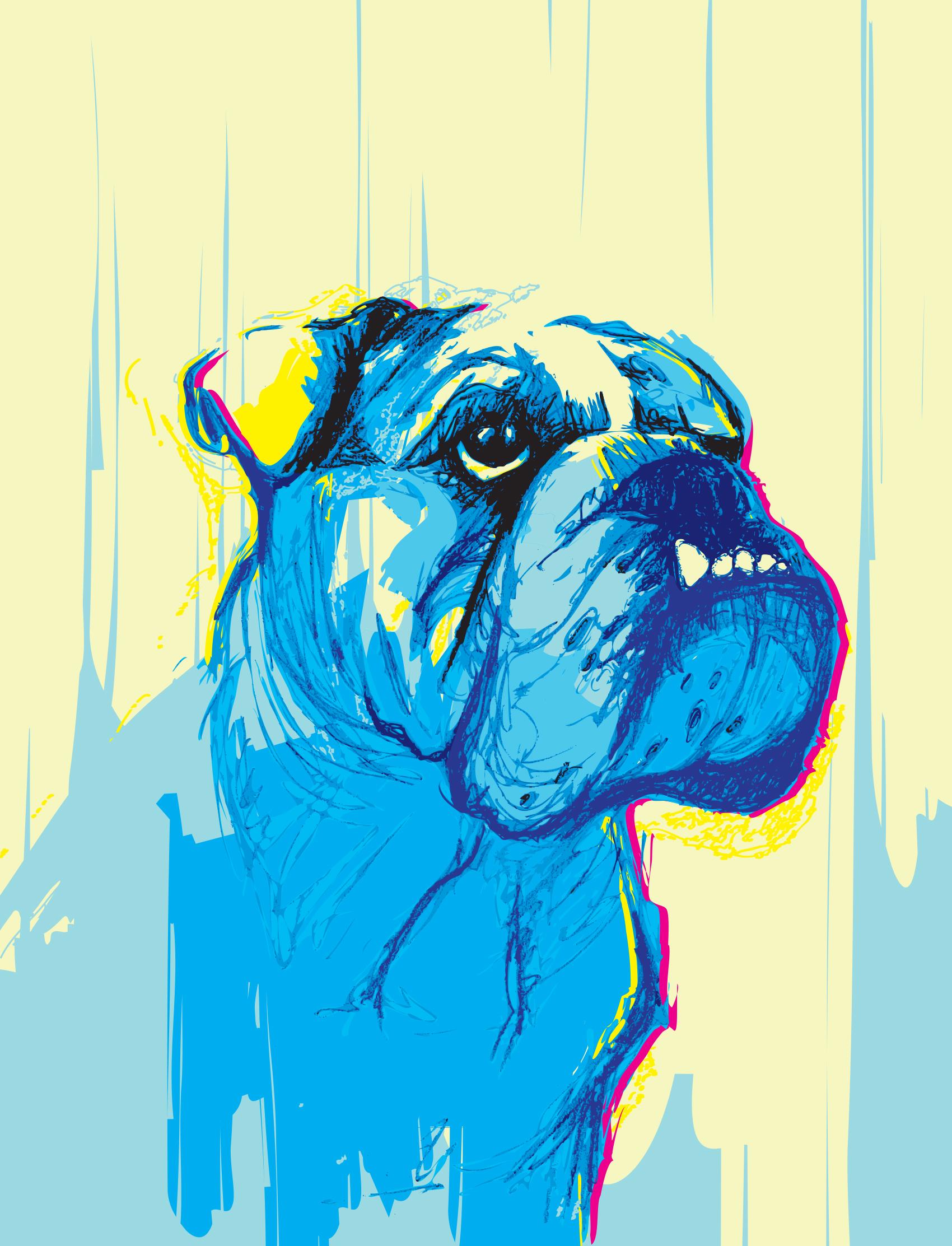 digital-drawing-20-pets-kimbo.jpg