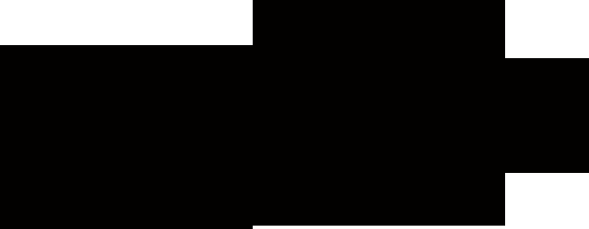 EVESTUS_logo_2020_BLACK_.png