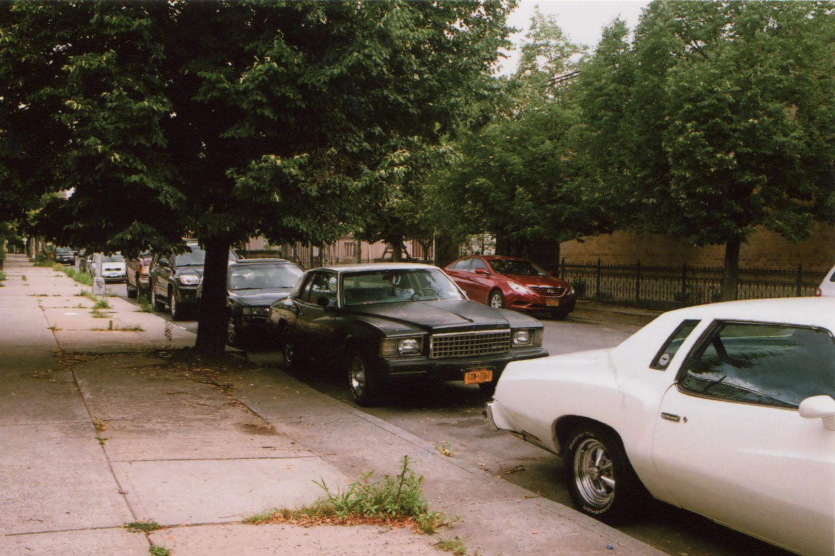 bushwick cars-emily ramon.jpg