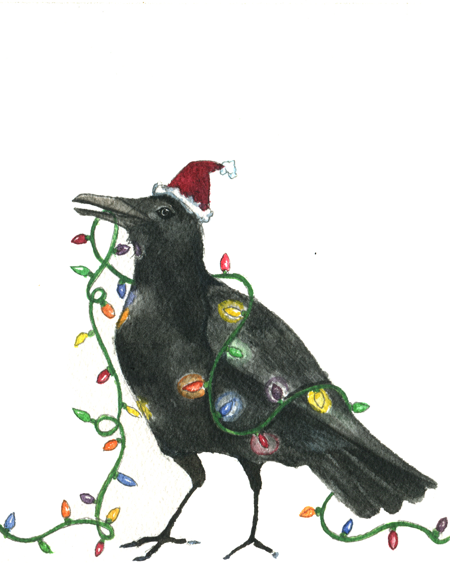 holiday crow.jpg