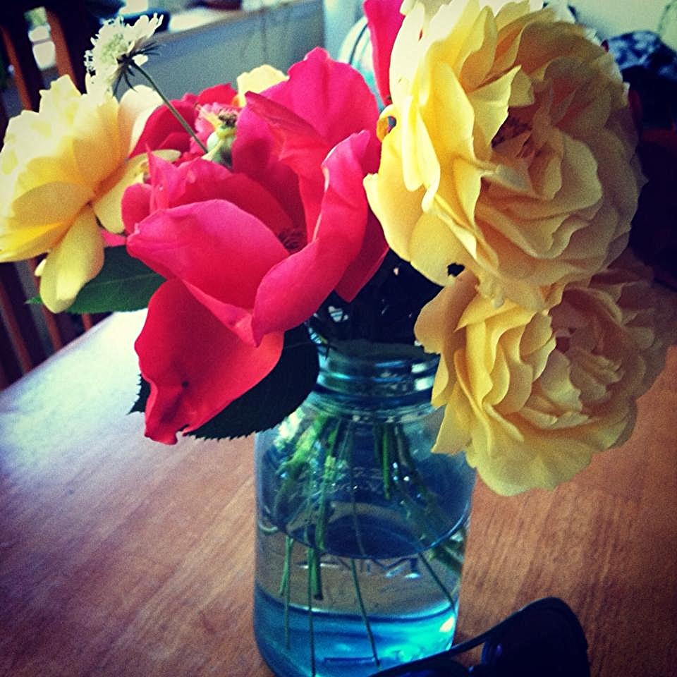 Flowers from the garden. Larkin's jar.
