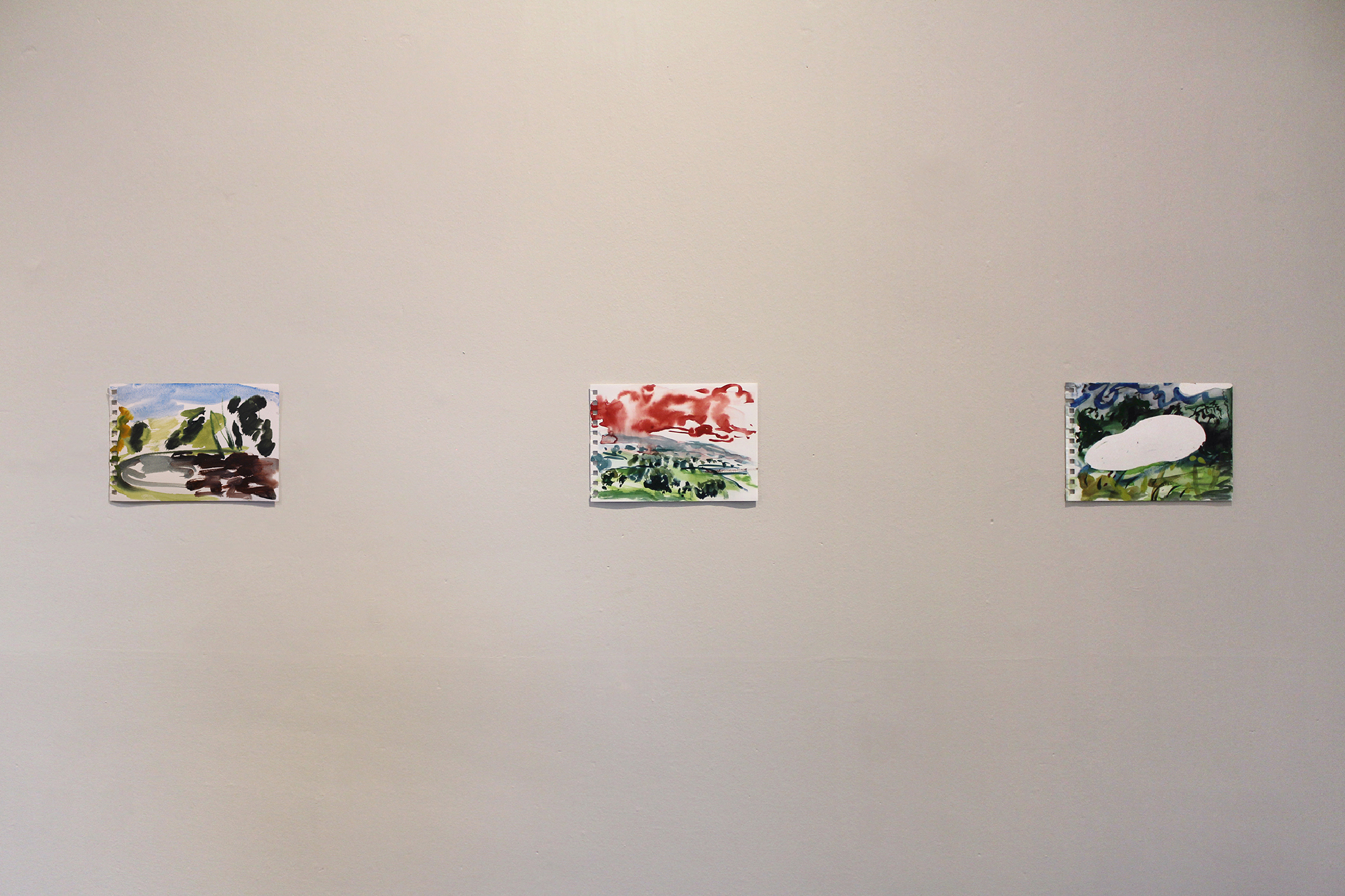 Installation view    En Plein Air Paintings     (Hestercombe),  2015, watercolour, acrylic, sunlight-developed dye on paper
