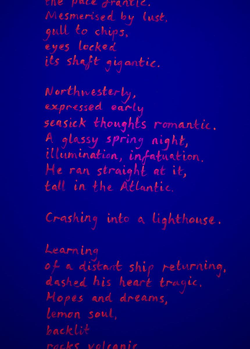 Detail:  Frantic Romantic (darkroom poem) , UV acrylic, height 280cm