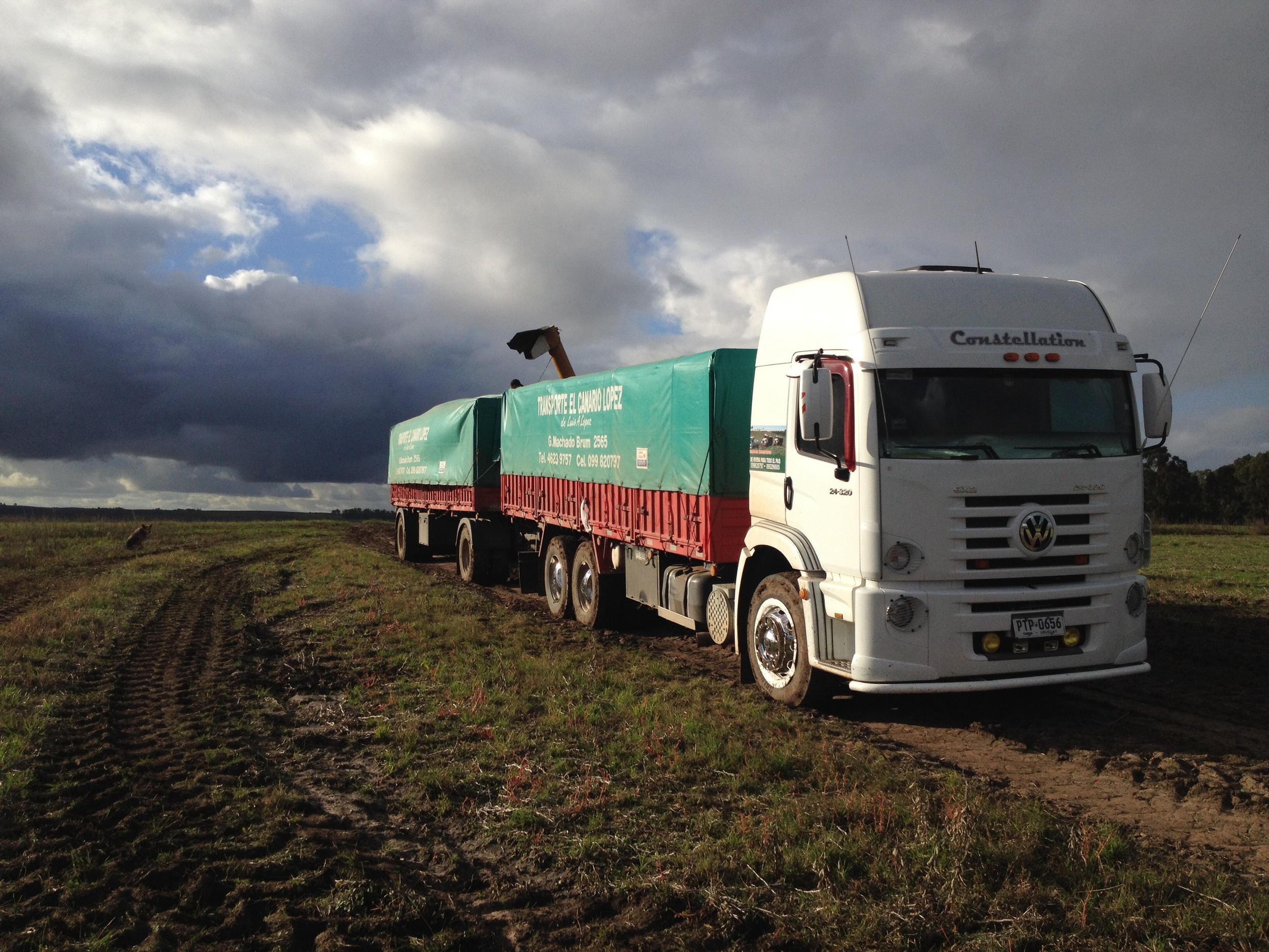 Caminhão carregado de soja