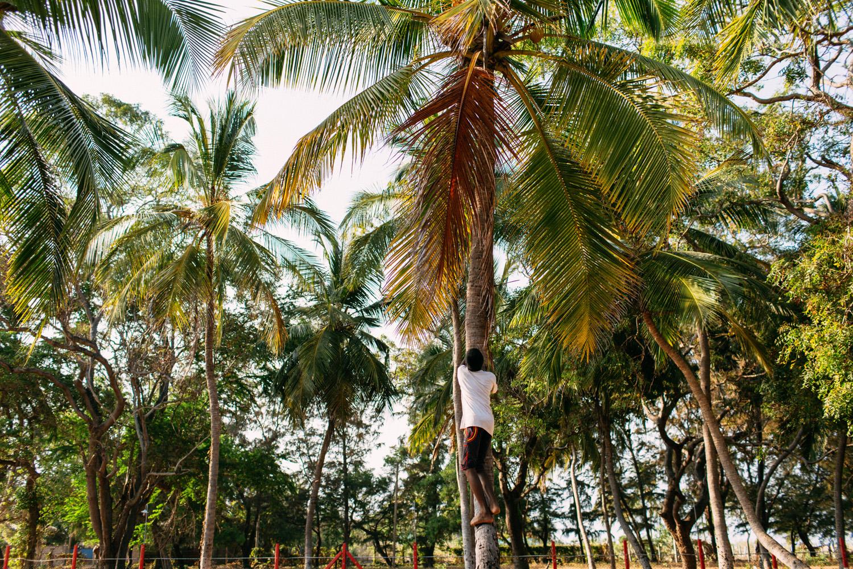 kallady beach batticaloa eduardo e monica viagem