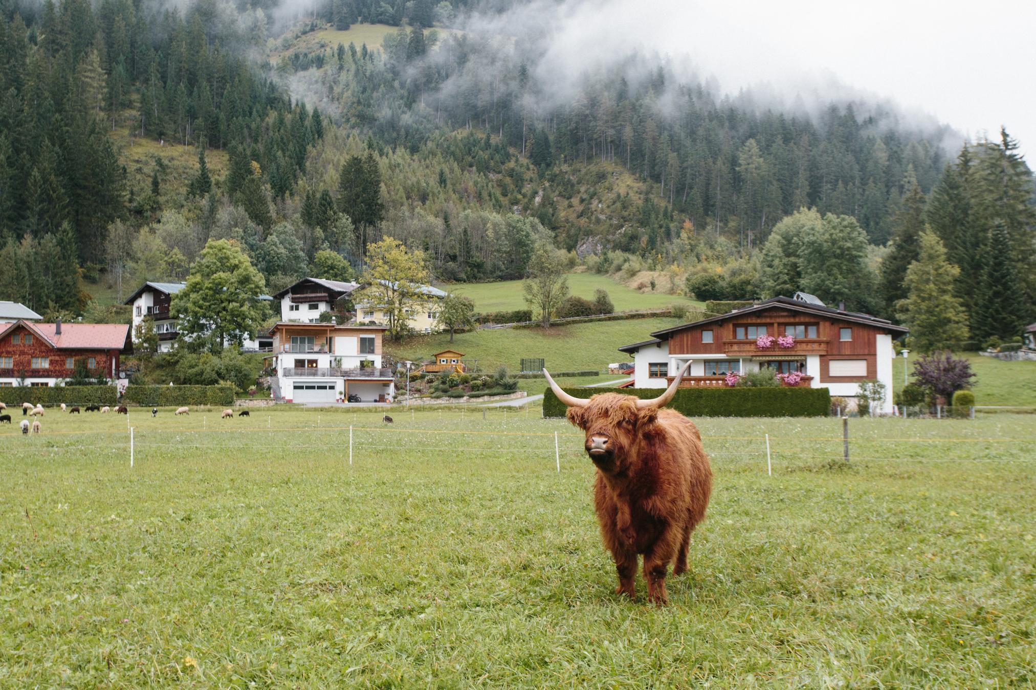 Alpes Austriacos e Alemanha-74.jpg