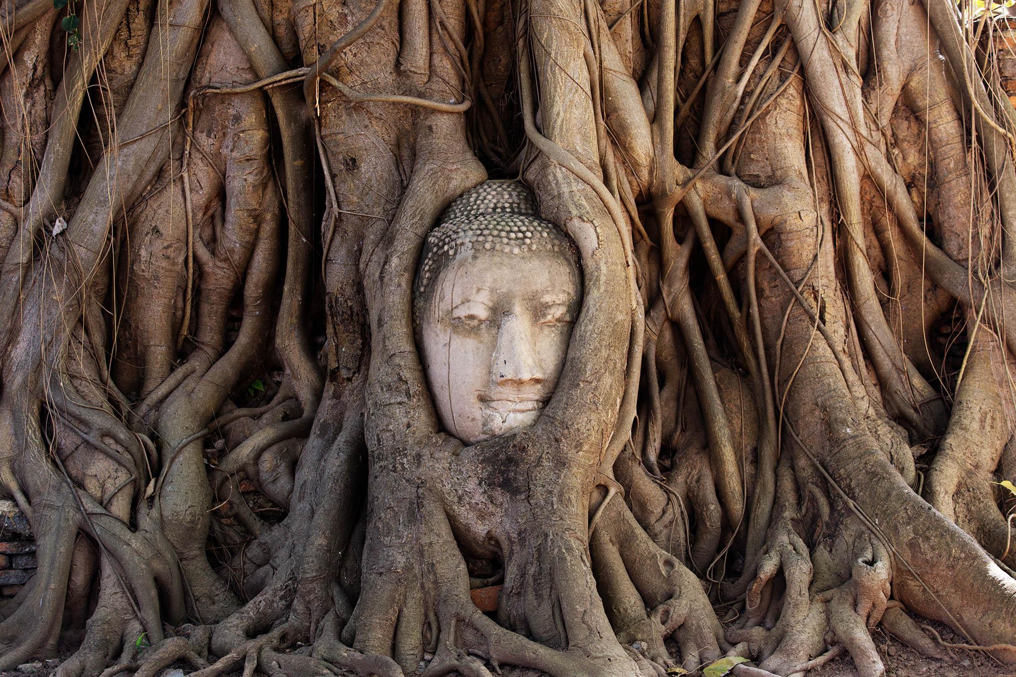 bangkok tailandia eduardo e monica