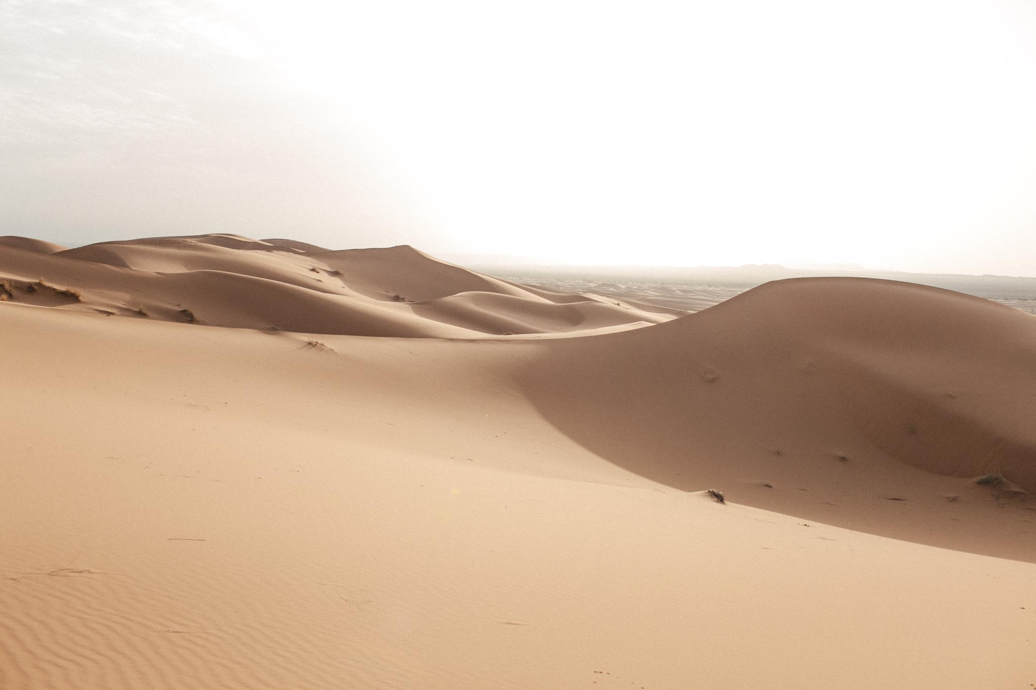 Sahara,5D MK3