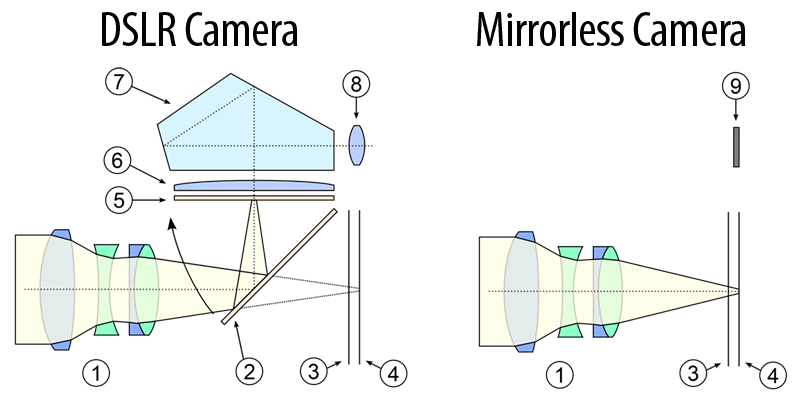 Imagen tirada do Wikipedia