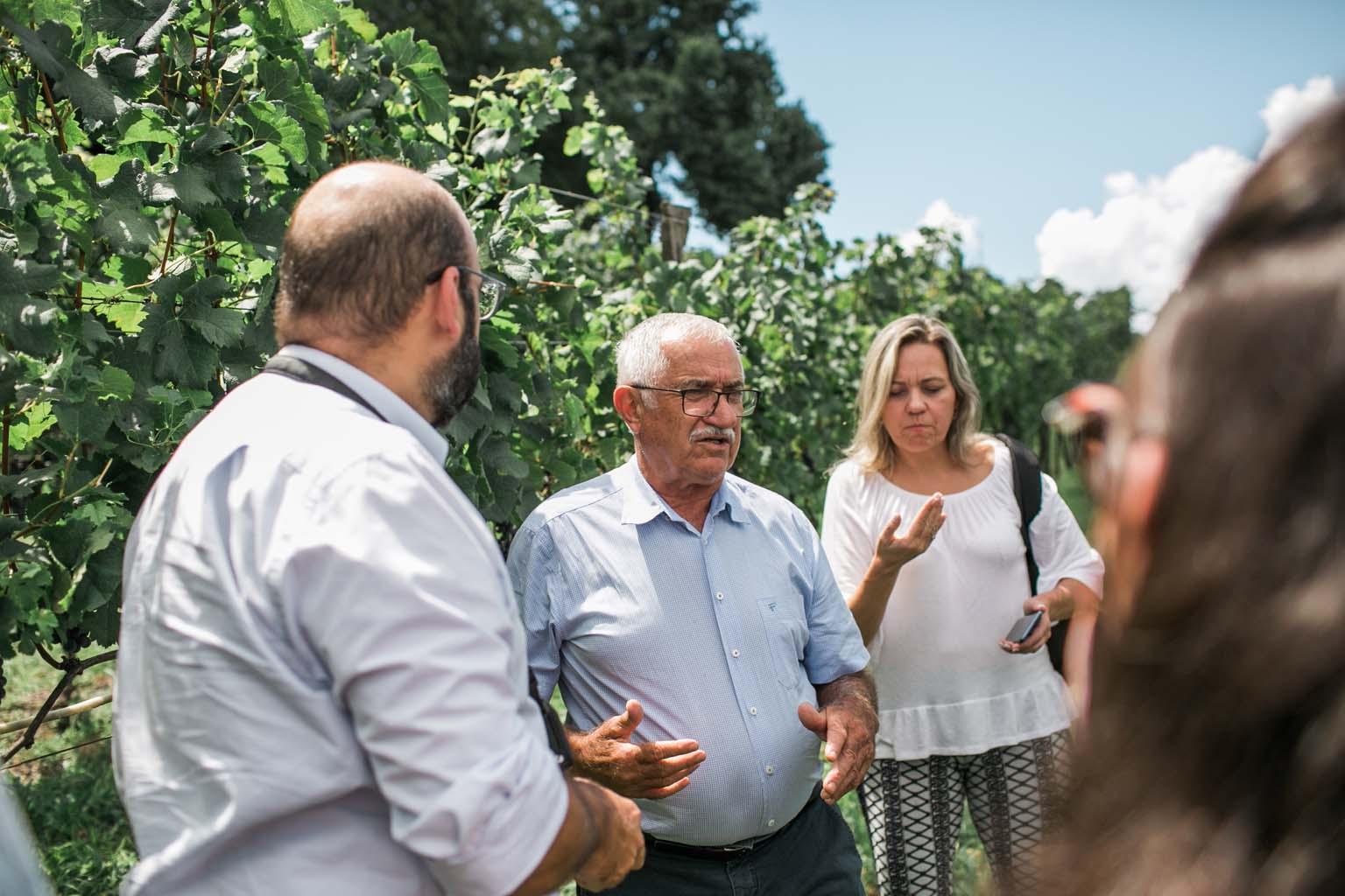 Sr Plínio Pizzato explicando a história da vinícola.