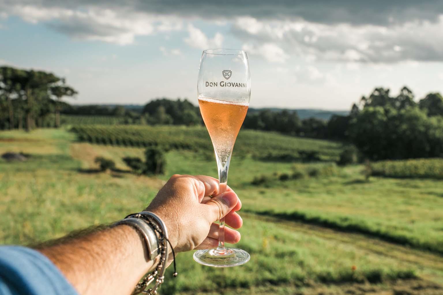 vinícola don giovanni serra gaucha