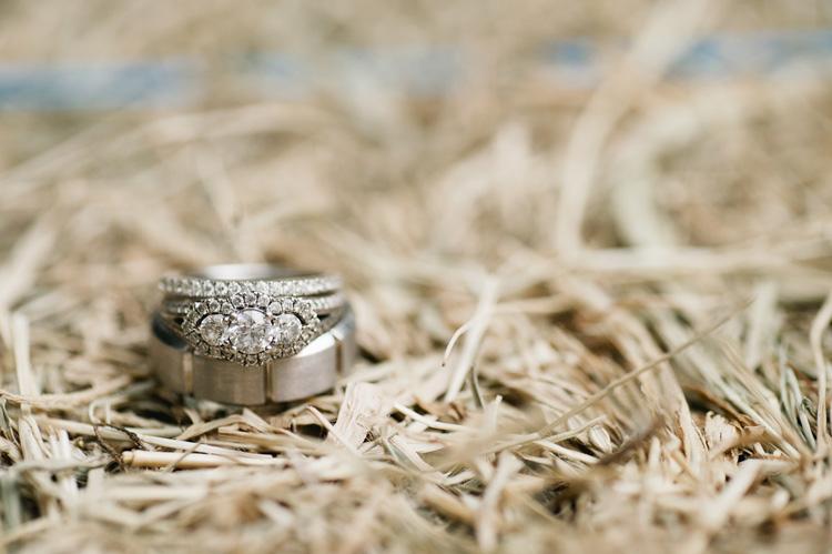 Wedding-Photographer-Sydney-C&M55.jpg