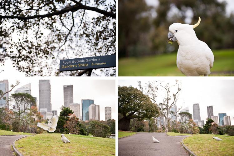 Engagement-Photographer-Sydney-J&R1.1.jpg