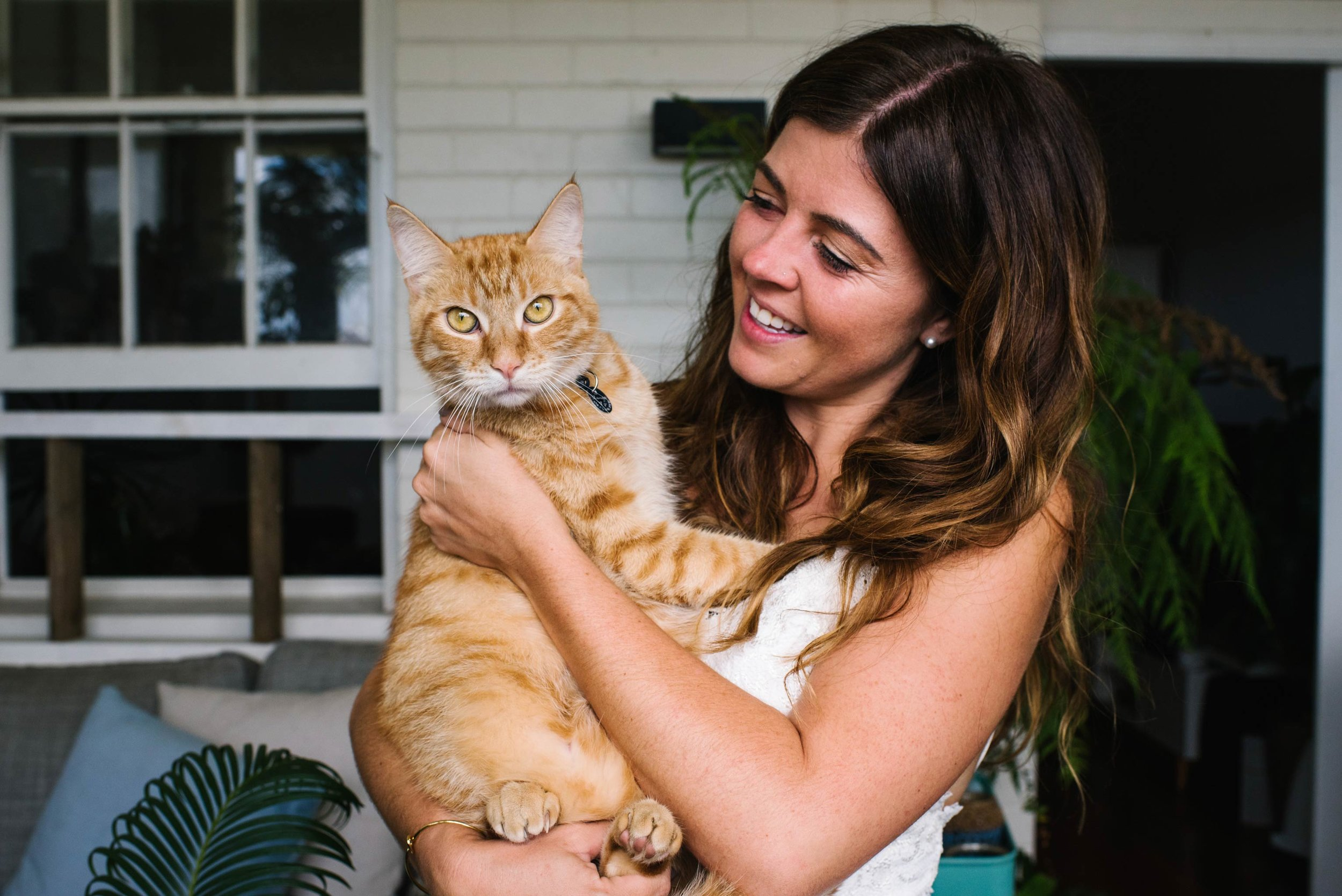Bride and her ginger cat