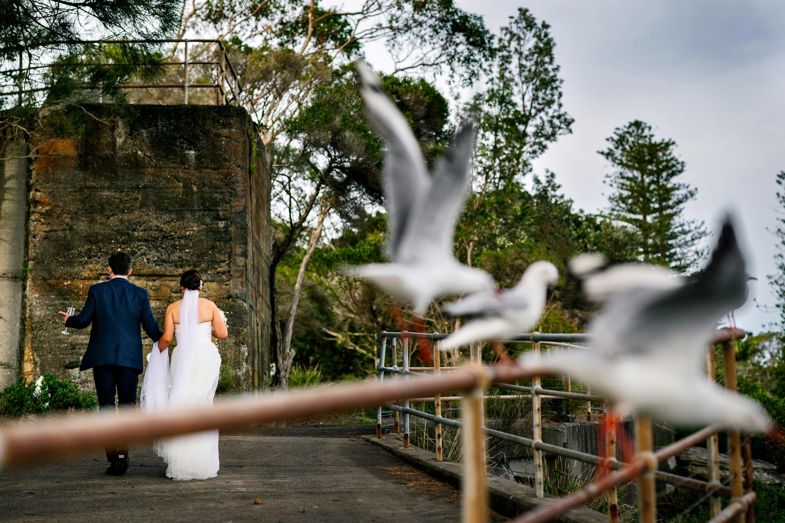 Bride and groom with birds flying away in foreground at Little Manly Point