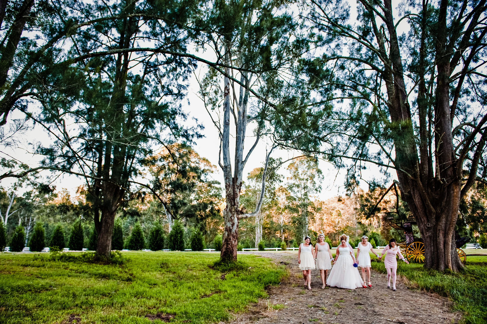 Bridesmaids and bride walking through gardens at Redwood Park