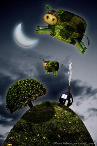 Over The Moon - www.artfolio.com.au