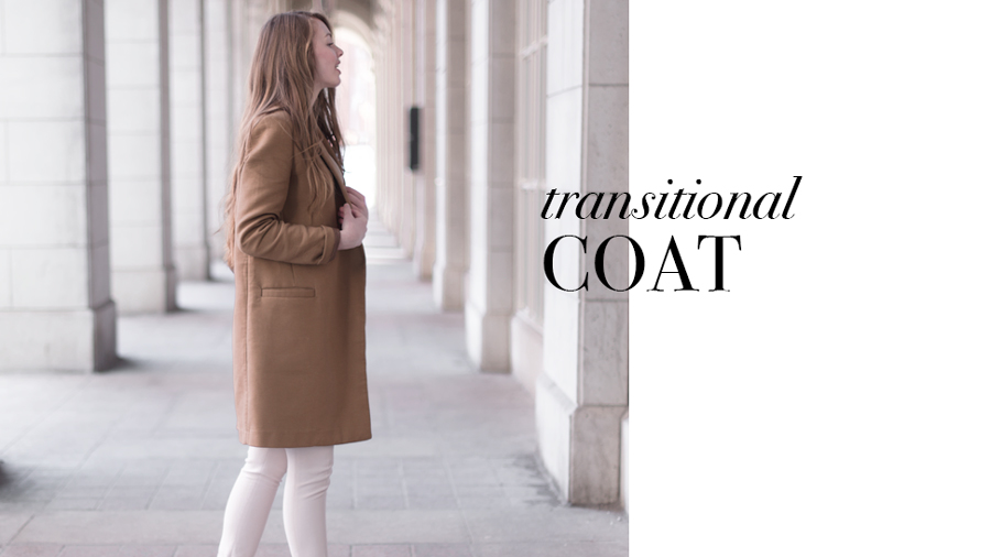 2-transitional-coat-brown.jpg