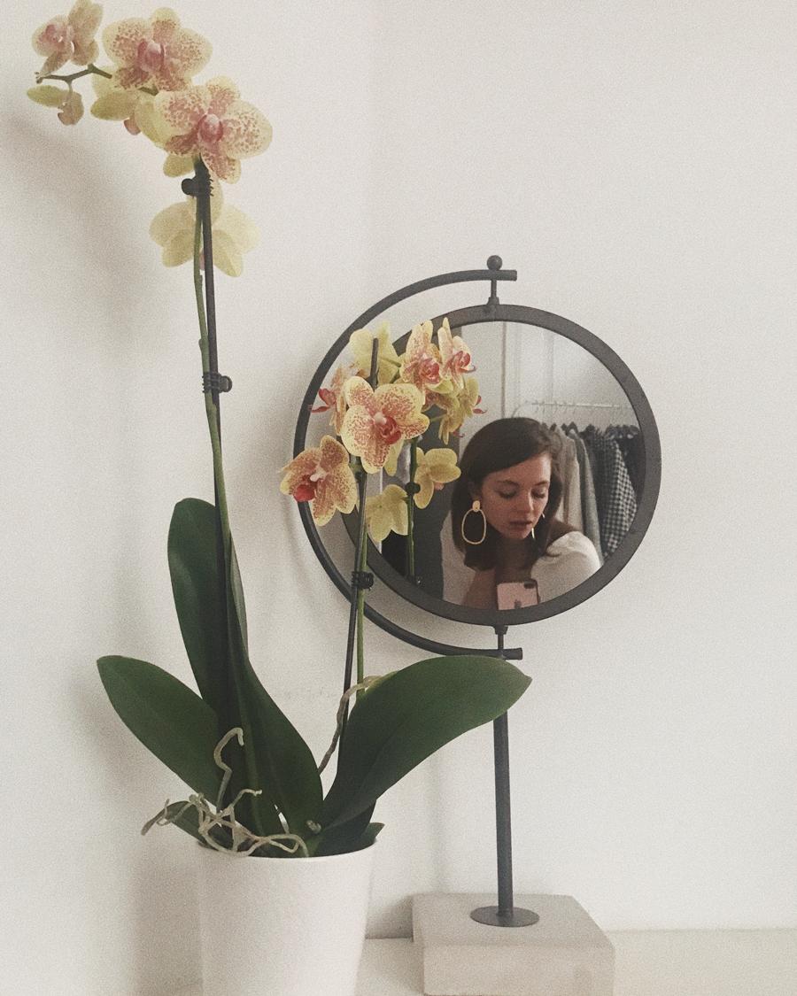 portrait-orchid1.jpg