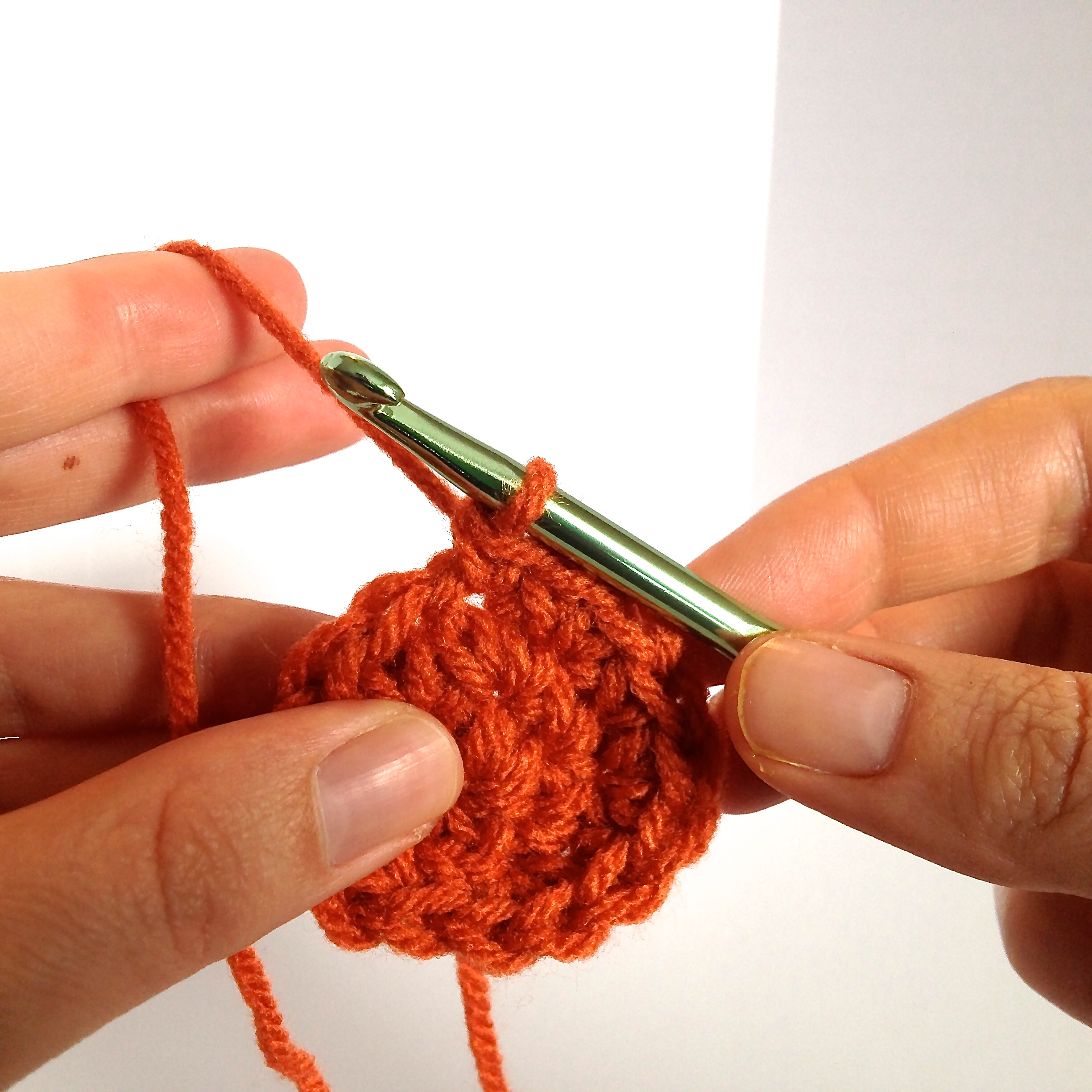 Holding Yarn and Hook