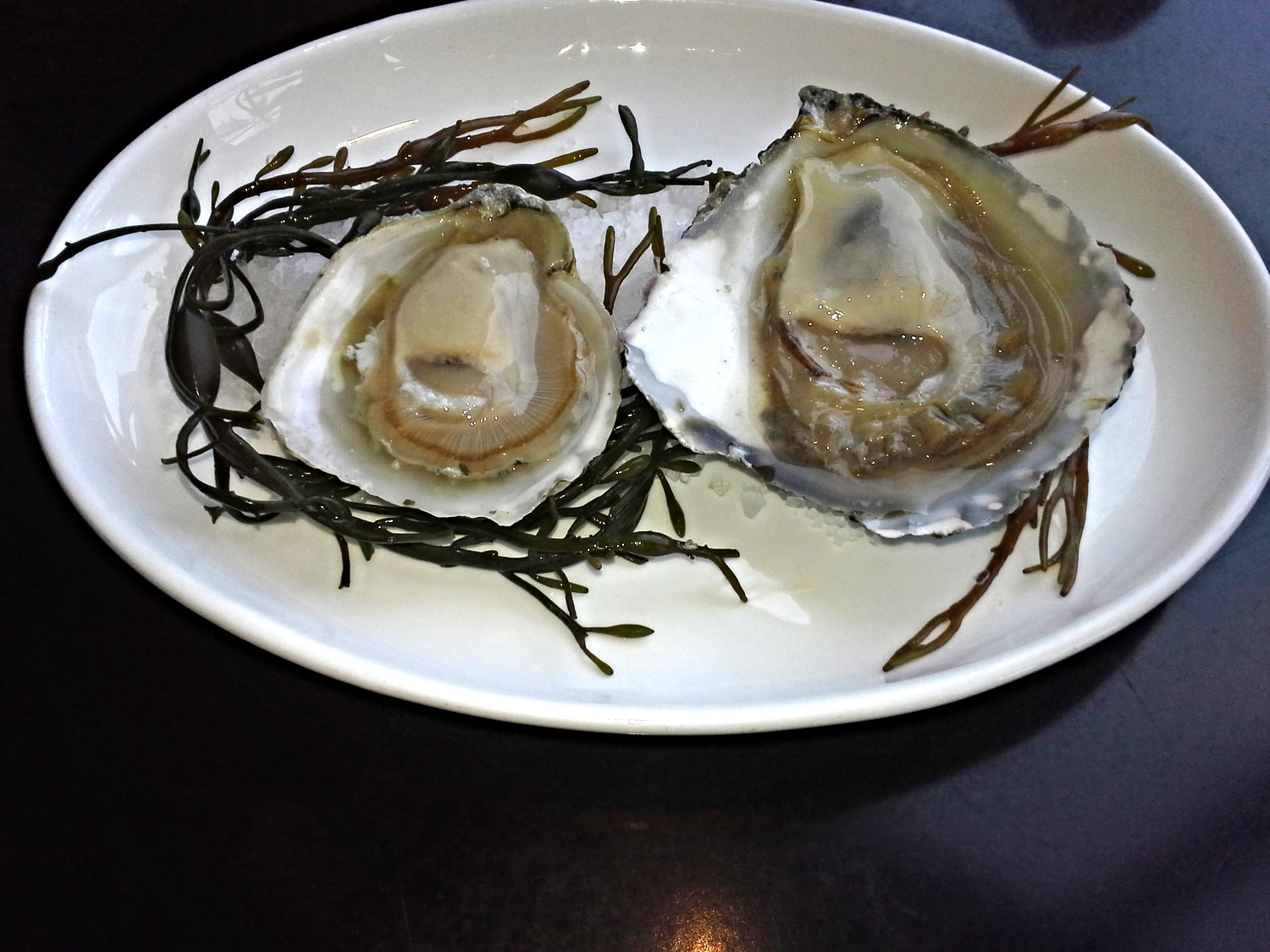 Click on the image and it will lead to our Oyster 101 page, oyster knowledge is important.