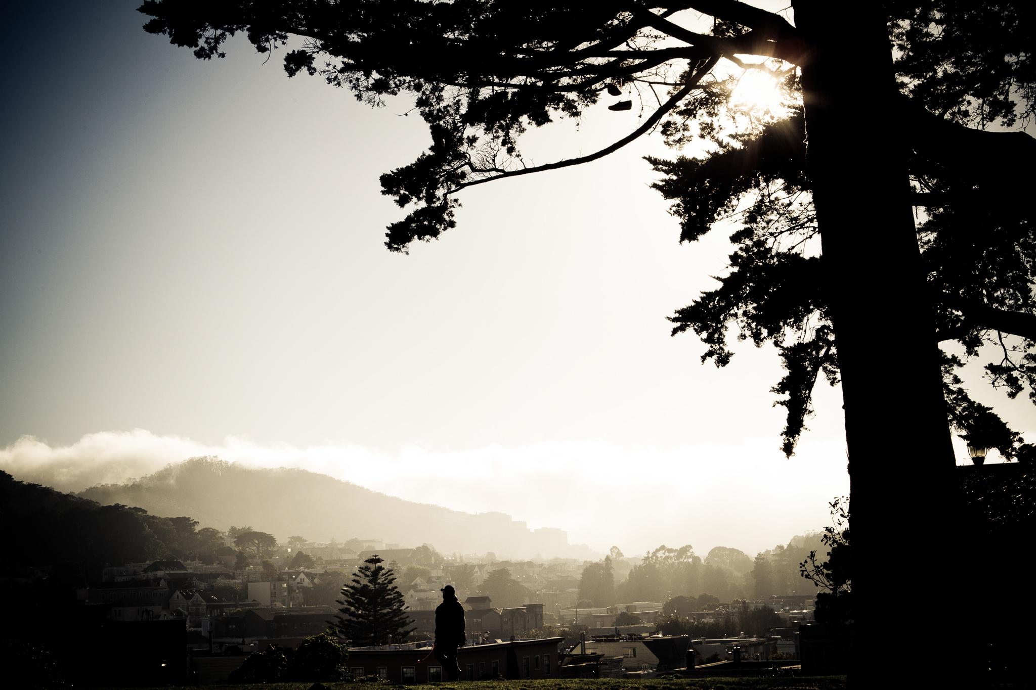 014_stroll_in_the_park_SF.jpg