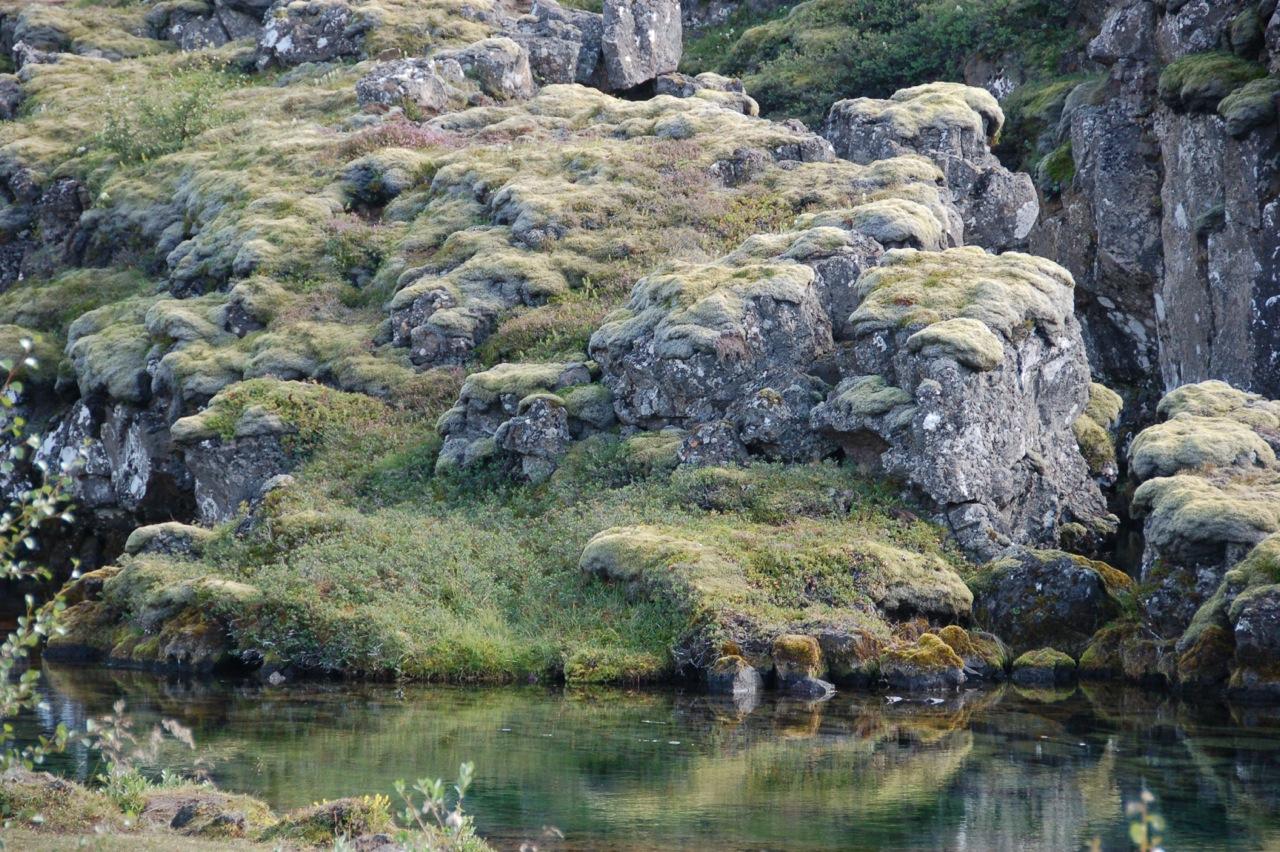 Iceland_Pingvellir_9.jpeg